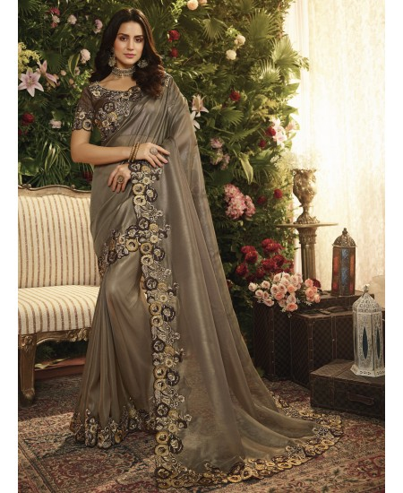 Brown Fancy Fabric Saree